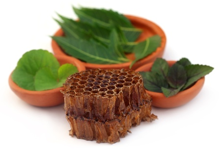 Medicinal herbs with honey comb photo