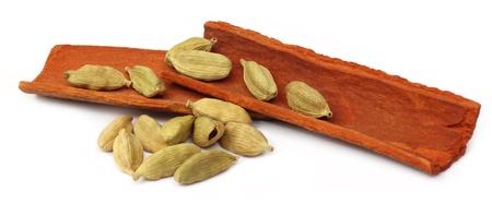 cinnamon bark: Cardamom seeds with cinnamon bark Stock Photo