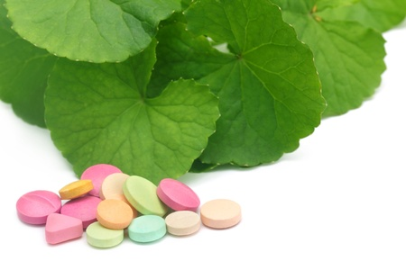 longevity drugs: Medicinal thankuni leaves with colorful pills Stock Photo