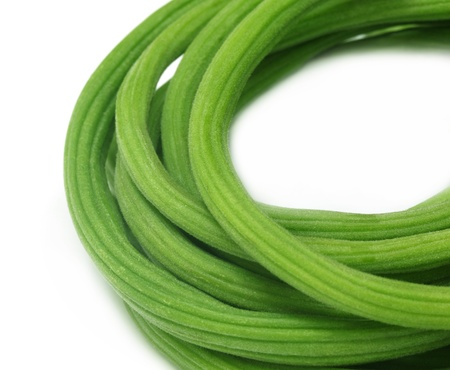 oleifera: Moringa oleifera
