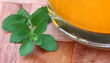 steviol: Stevia with juice