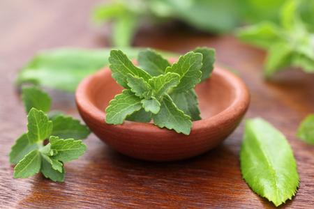 medicinal plants: Stevia con otras hierbas medicinales