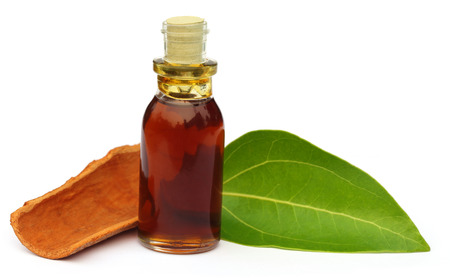essentials: Cinnamon leaf with bark and essential oil over white