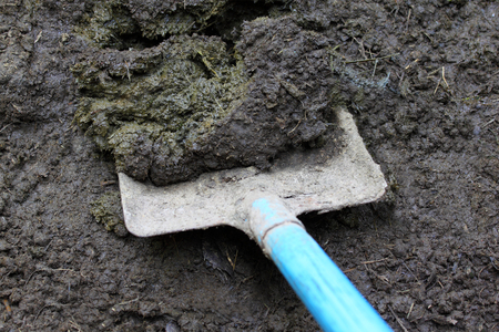 Closeup of cow manure with shovel photo