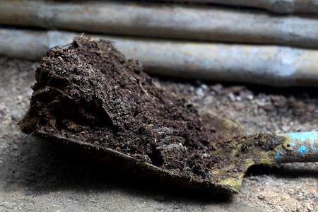 Closeup of cow manure with shovel on ground photo