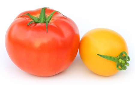 Ripe tomatoes of two colors over white background photo