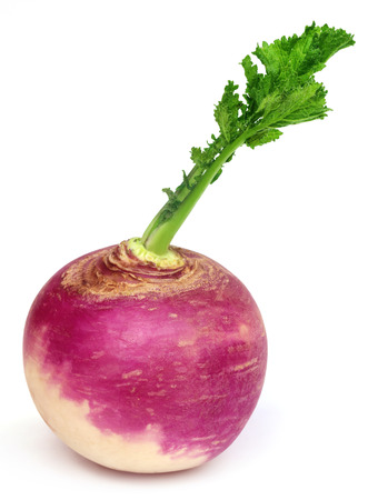 Turnip over white background