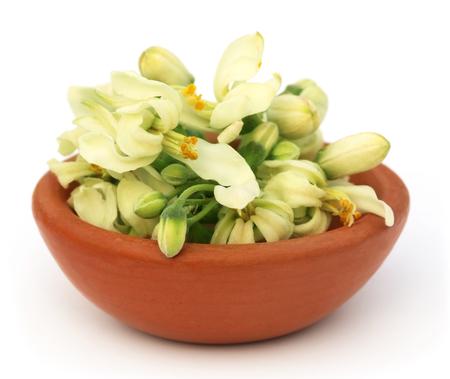 mlonge: Commestibile fiore moringa su una ciotola marrone su backgrokund bianco