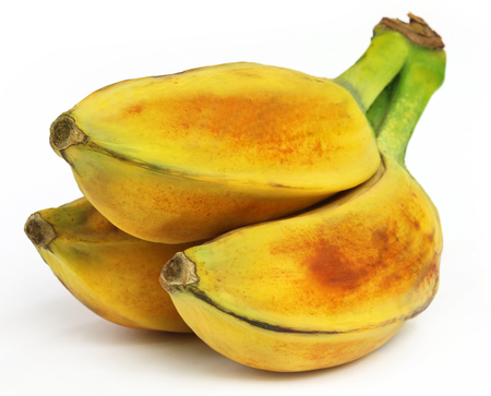 musa: Musa balbisiana,  A wild banana of Southeast Asia Stock Photo