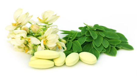 ben oil: Moringa leaves and flower with pills over white background