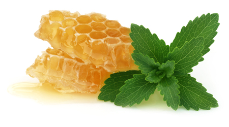 steviol: Honey comb with stevia over white