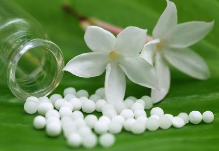 Homeopathie bolletjes met kruiden bloem op groen blad Stockfoto