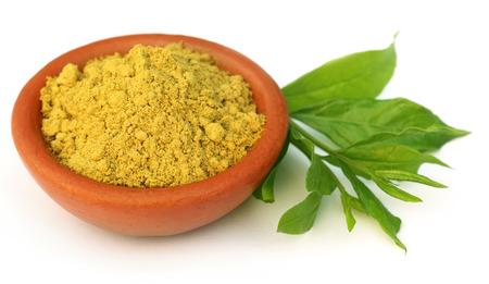 Henna leaves with sandalwood powder over white background Stock Photo