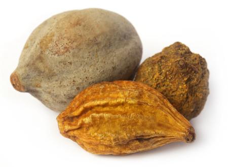 Triphala、インド亜大陸のアーユルヴェーダ果物の組み合わせ 写真素材