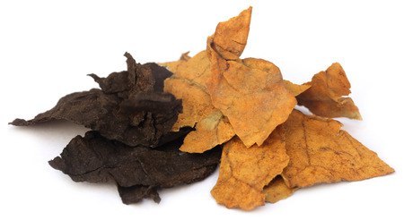 Dried tobacco leaves over white background photo
