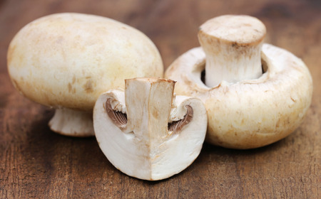 button mushroom: Close up of Button Mushroom