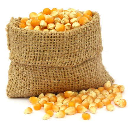 sac: Corns in sack bag over white background Stock Photo