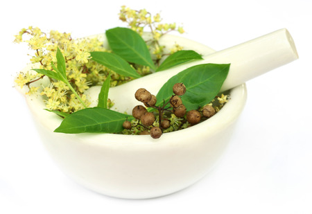 mehandi: Henna leaves with flower and seeds in a mortar