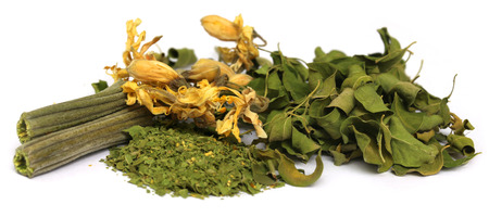 Dried moringa with leaves and flower over white background photo