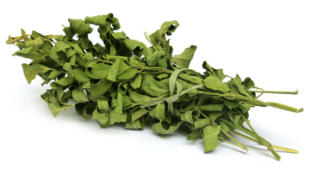 mlonge: Moringa foglie essiccate su sfondo bianco Archivio Fotografico