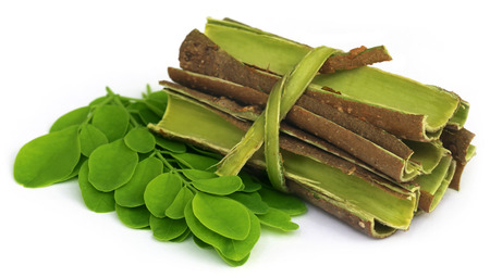 sonjna: Moringa leaves and bark over white background