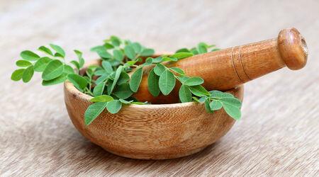 Moringa leaves with mortar and pestle photo