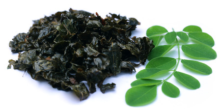 ben oil: Fried and green moringa leaves over white background