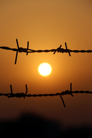barbed wire fence: Setting sun behind a fence of barbed wire