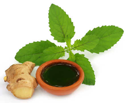 tulasi: Ayurvedic combination of holy basil and ginger over white background Stock Photo