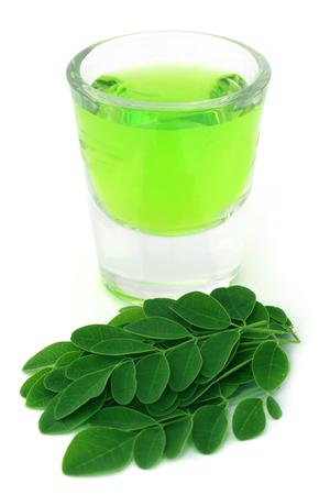 mlonge: Moringa lascia con estratto in un bicchiere su sfondo bianco
