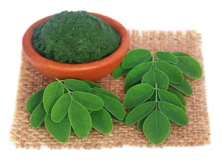 sajna: Edible moringa leaves with ground paste on sack surface Stock Photo