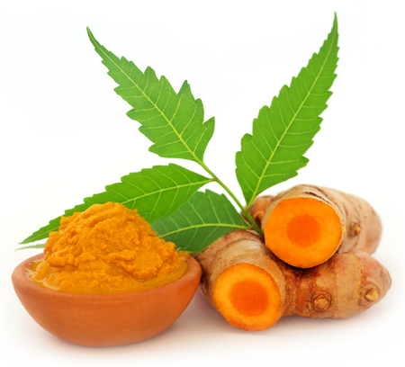 Turmeric with neem leaves over white background Foto de archivo