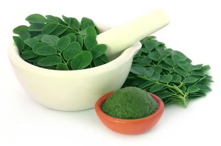Edible moringa leaves with ground paste over white background Standard-Bild