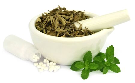 steviol: Dry and fresh Stevia leaves with pills over white background