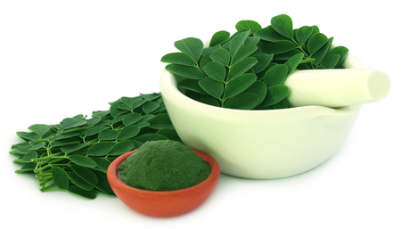 malunggay: Moringa leaves with mashed ones over white background Stock Photo