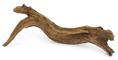 Driftwood over white background Stock Photo