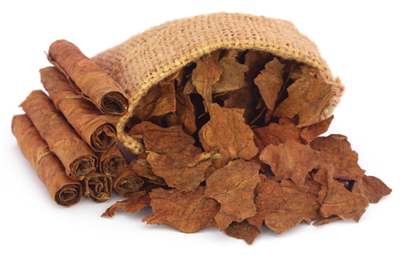 Dry tobacco leaves in sack over white background