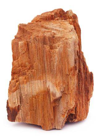 sedimentary: Sedimentary rock over white background