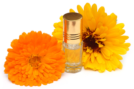 scent: Closeup of calendula with scent bottle over white background