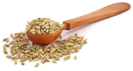 fennel seeds: Fennel seeds in a wooden spoon over white background