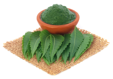 neem: Fresh and mashed medicinal neem leaves ove white background
