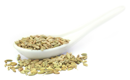 fennel seeds: Fennel seeds in a white spoon over white background