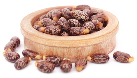 triglycerides: Castor beans in a wooden bowl over white background
