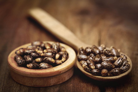 triglycerides: Castor beans in a wooden spoon and bowl on wooden surface Stock Photo