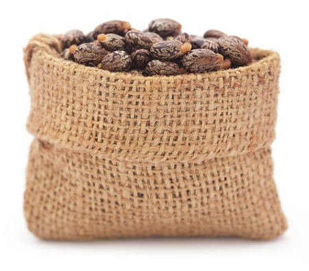 triglycerides: Castor beans in a jute bag over white background Stock Photo