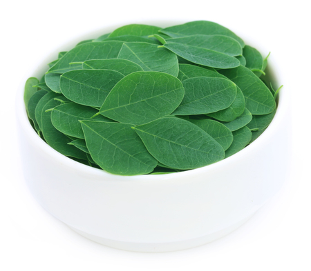 sajna: Moringa leaves in a bowl over white background