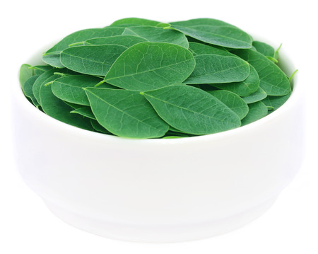 sajna: Edible moringa leaves in a bowl over white background Stock Photo