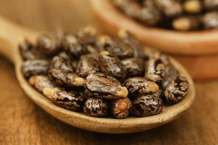 triglycerides: Closeup of soem dry castor beans Stock Photo