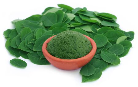 sajna: Edible moringa leaves with ground paste in a pottery over white background Stock Photo