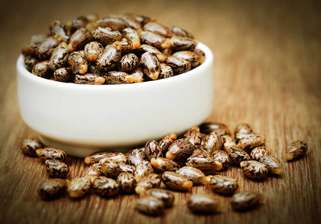 triglycerides: Castor beans in a  ceramic bowl on wooden surface